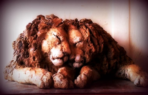 2eme couple de lions.jpg